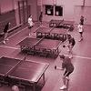 Tischtennis Zufallsbilder_202